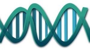 ADN. Acné quístico