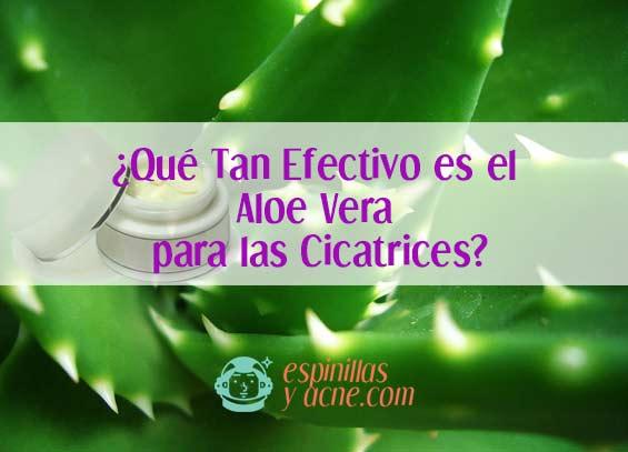 ¿Qué Tan Efectivo es el Aloe Vera para las Cicatrices?